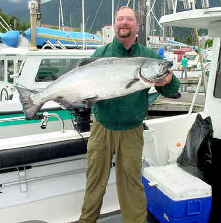 A very nice king salmon