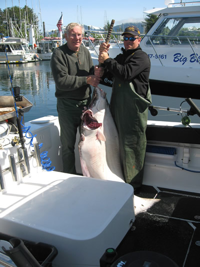 Joe Sestak goes for broke on this huge Halibut.