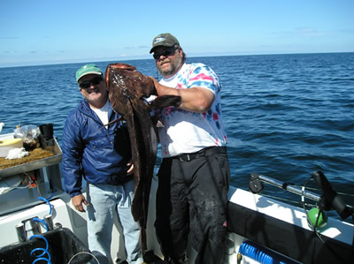 John Williams A day late and a dollar short, had to thorw back this HUGE ling cod!